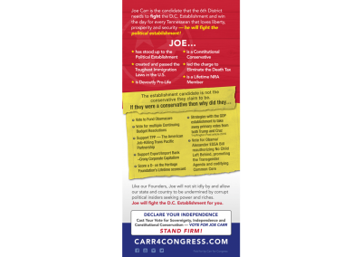 Carr 4 Congress - Palm Card - Back